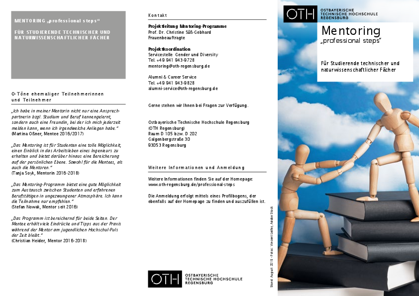 "Flyer Mentoring ""professional steps"""